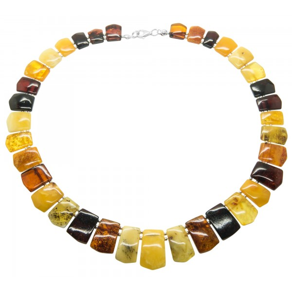 Luxueux collier d'ambre adulte multicolore