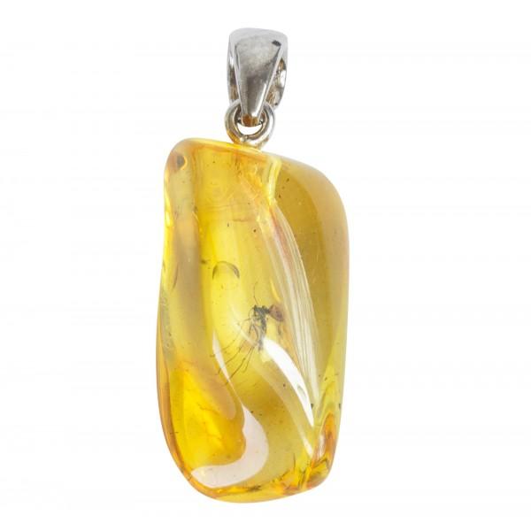 Pendentif ambre jaune avec inclusion d'insecte, crochet argent massif