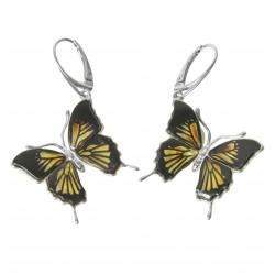 Boucle d'oreille papillon zèbre en Ambre et argent Massif